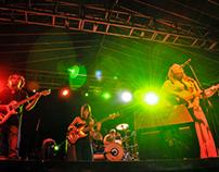 Lion Summer Fest 2013
