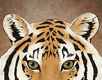 Save The Tiger Mailout