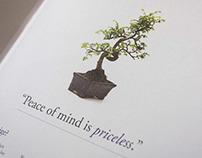 Prestige Insurance Brochure