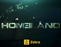 TV 2 Homeland