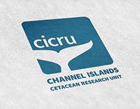 CICRU Logo & Branding