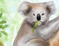 Aussie Wildlife.