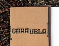 Caravela I