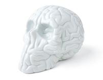Limoges Skull Brain