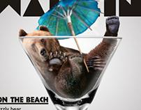 Bear on the Beach