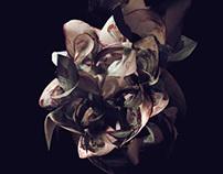 Bloom: Étude Op. 2 No. 2