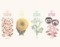 Embalagens para Sementes_Árvore Querida