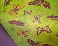 Butterfly / Insects Pattern