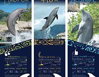 """""""Dolphin center"""" panneaux informatifs"""