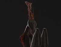 Ghost Mantis WIP
