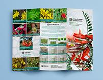 Mokuti Herbs International