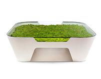Greenside Collection - Verde Profilo