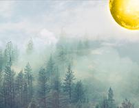 Morning Moon (Golden Moon)
