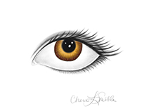 Eye, Apple Pencil