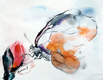 Butterfly Watercolor Paintings