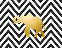 Invitación Salón de Exposiciones Zoo