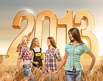 АМАКО calendar 2013