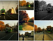Jesienny kolaż | Autumn collage