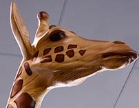 Reticulated Giraffe