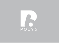 POLY6 - initial