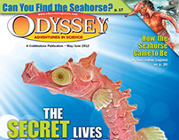 Odyssey Magazine - The Secret Lives of Seahorses