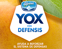 yox free version