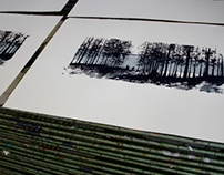 'The greatness of nature' silkscreen in progress