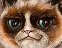 Grumpy cat...more ironic smile than grumpy