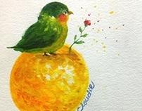 Cluodie Illustration