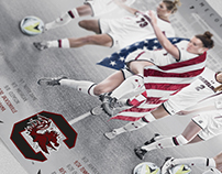 2017 Gamecock Women's Soccer poster