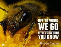 Bee Native non-profit