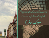 fragments of Oradea architecture