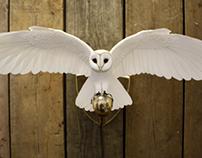 Hand made Barn owl wall light
