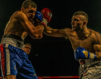 "Boxe at the ""Madison"" - Bologna"