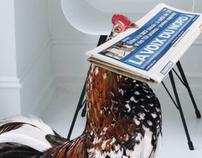 La Voix du Nord adopte un coq pour réveiller ses ventes