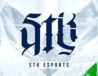 STK eSports