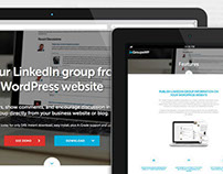 LinkedIn Groups for WordPress Plugin Website