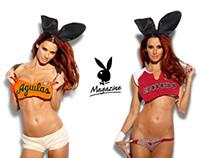 Introducción de marca / Playboy