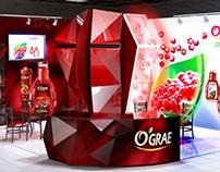 Ograe exhibition