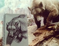 AMNH Diorama sketches