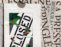 Typographic Collages.