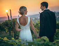 Enchanting wedding at the vineyard and olive grove