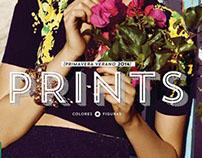 Prints - Saga Falabella (Boceto)