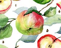 Watercolor apples kit