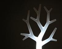 Tree&Root
