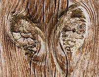 Wooden Dreams