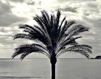 Mallorca | November