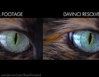 DaVinci Resolve_ Color Correction V2