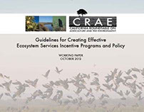 Guidelines for Creating Effective Ecosystem