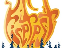 Firefest 2013